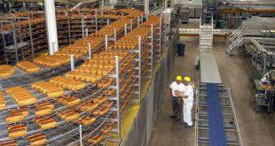 دستگاه های تونلی پخت نان